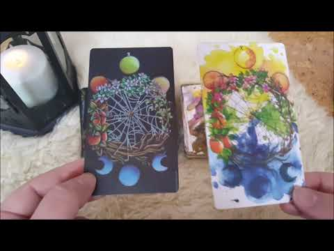 Lili White and Lili Black Tarot Walkthrough and Review