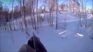 Охота на зайца в лесу зимой