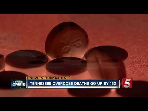 Overdose deaths rise in Tennessee despite national trend