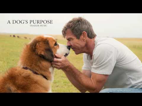 A Dog's Purpose - Trailer Music