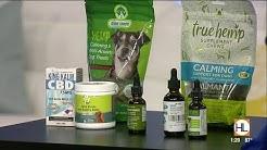 CBD for your pet? | HOUSTON LIFE | KPRC 2