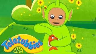 1 2 3 4 5 Once I Caught a Fish Alive + Many Nursery Rhymes for Children | Kids Songs Teletubbies