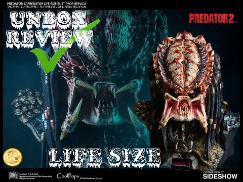 PREDATOR 2 LIFE SIZE BUST 1:1 SCALE | CoolProps | Sideshow Collectibles | Review #194