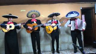 Las Mañanitas - Mariachi banda de mi tierra.