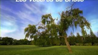 EL inmenso don de Dios(Los Voceros de Cristo).mpg