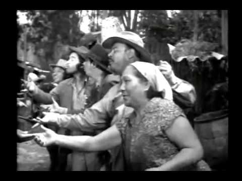 Ver Escuela Para Suegras Tin Tan 480p en Español