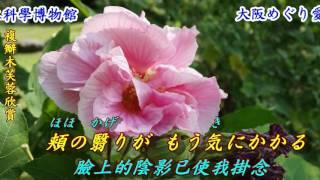 作詞:吉田旺...........作曲:市川昭介...........原唱:上沼恵美子......