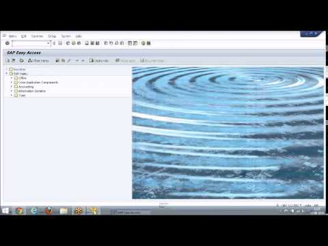 SAP GRC 10.1 PROCESS CONTROL Training | GRC ACCESS CONTROL Demo Video