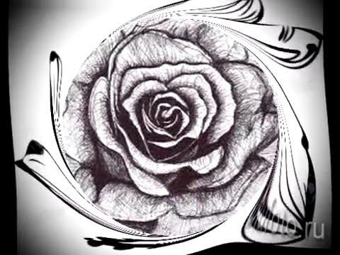 тату цветы эскизы   классные картинки для татуировки