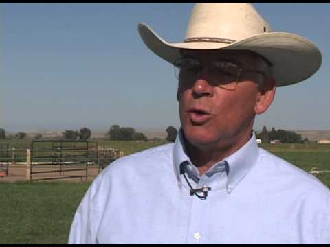 Spence Property | Managing Grazing on Small Acreages Part 2