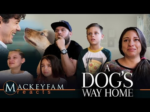 A DOG'S WAY HOME – Official Trailer- REACTION and REVIEW!!!