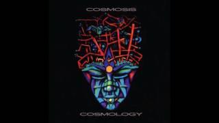 Cosmosis - Sanyacid (Cosmology LP)