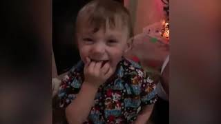 Fun And Fails Funniest Babies Trouble Maker P2- Funny Babies And Pet