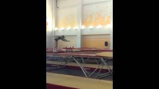 1 взрослый разряд по прыжкам на батуте