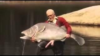 Неабычная рыба залупа