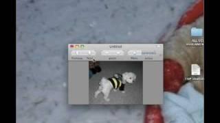 mac converting png to jpg