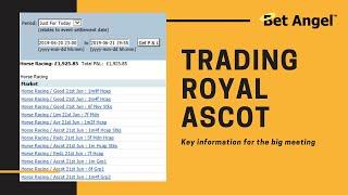 Peter Webb, Bet Angel - Trading Royal Ascot!