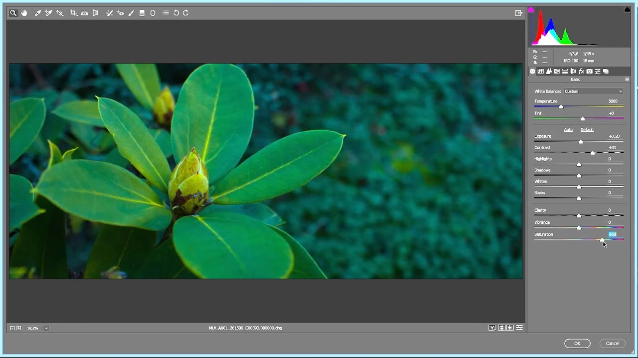 How To Convert And Edit Magic Lantern Raw Video Mlv Workflow Part 2 Youtube