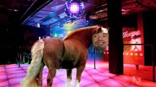 Sean The Horse!