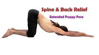 Spine Relief in Extended Puppy Pose | Uttana Shishosanasana | 2 Minutes Yoga for Beginners