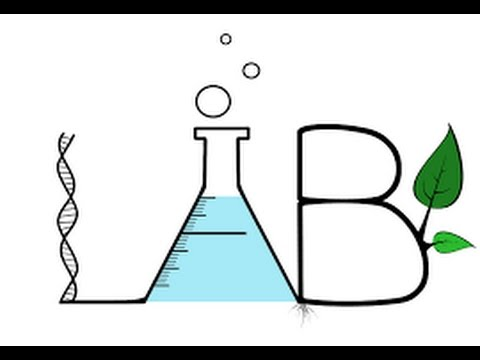 Part 1 of 2 Science Sunday welcome to the Lab