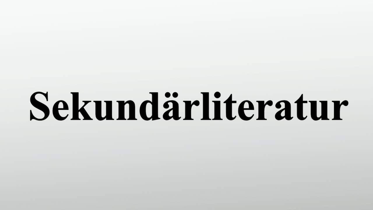 Sekundärliteratur Youtube
