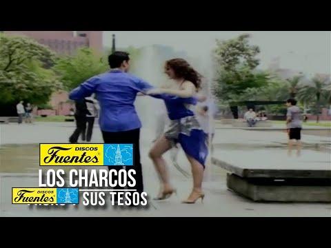Los Charcos - Fruko y Sus Tesos ( Video Oficial ) /  Discos Fuentes