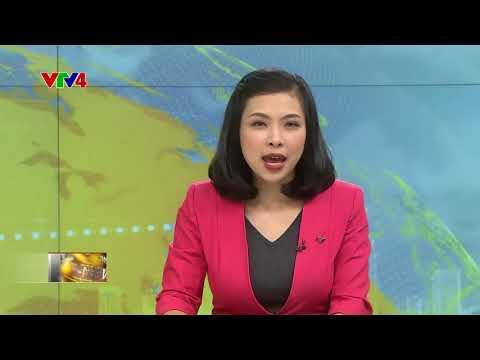 VTV News 18h - 17/11/2017