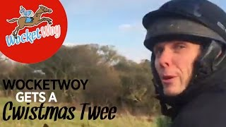 Mattie and Nobby get a Chwistmas Twee