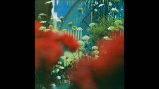 Pulled Apart by Horses - Moonbather