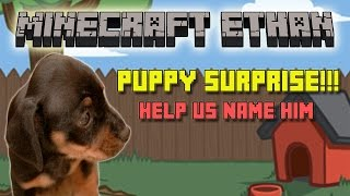 Puppy Surprise!!! What's His Name???