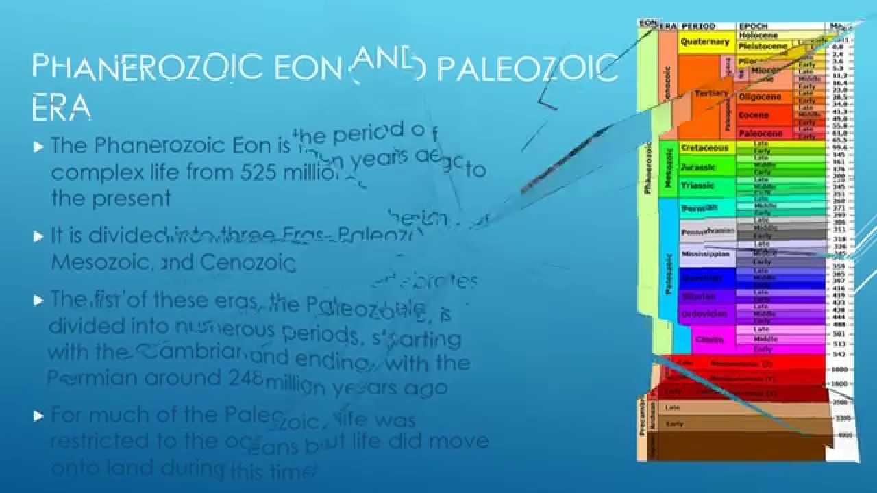 Life in the PALEOZOIC ERA