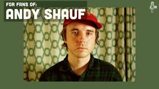 Andy Shauf   Similar Music Discovery