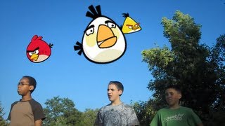 WHEN ANGRY BIRDS ATTACK!