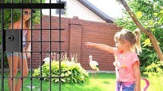 Оливия играет с папой в догонялки сборник героев сказок для детей