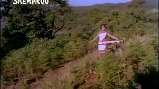 Do Dil 1965  Pyasi hirni