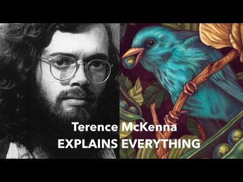Terence McKenna Explains Everything