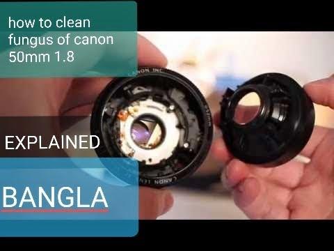 Clean Fungus inside canon 50mm f1.8
