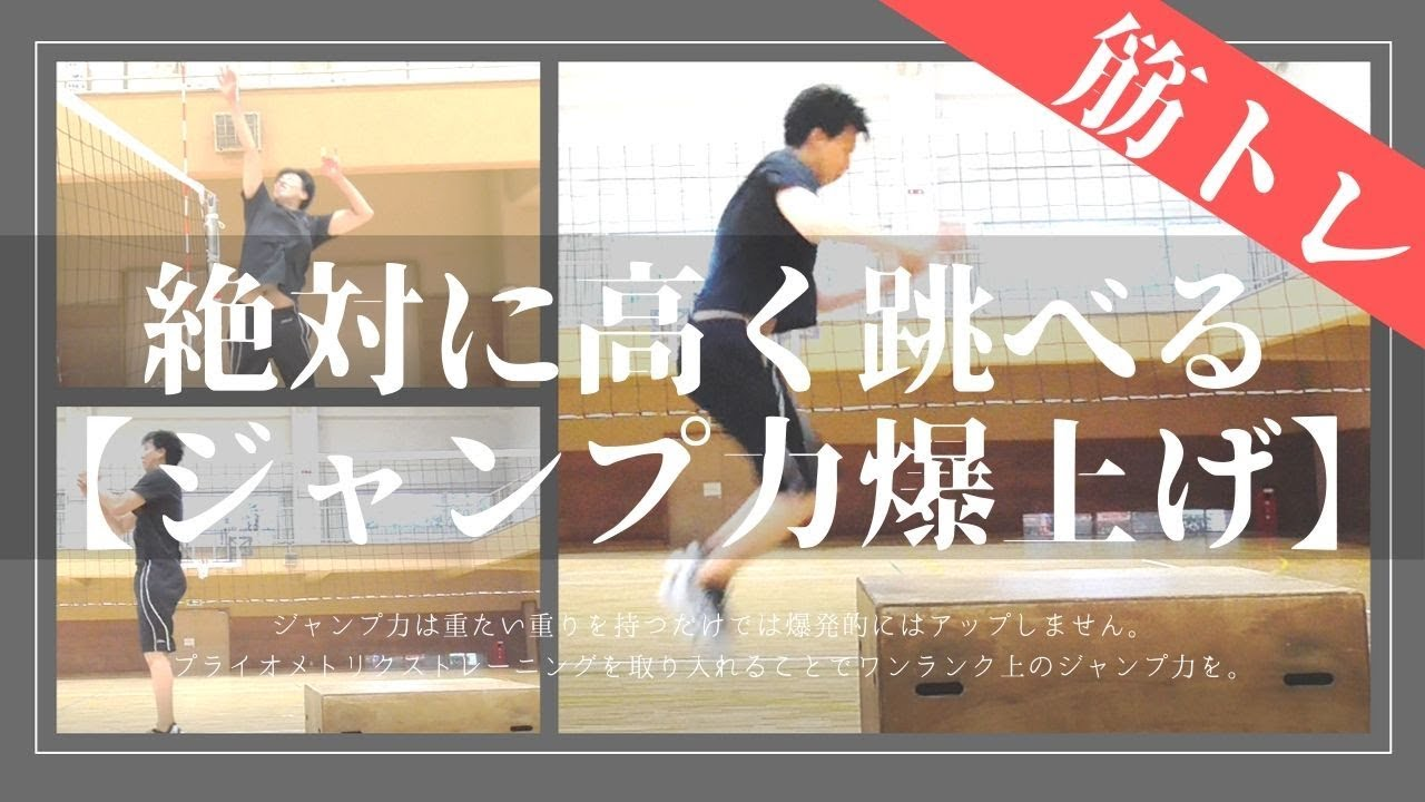 ジャンプ力は3ヵ月で30cm上がる Volleybody