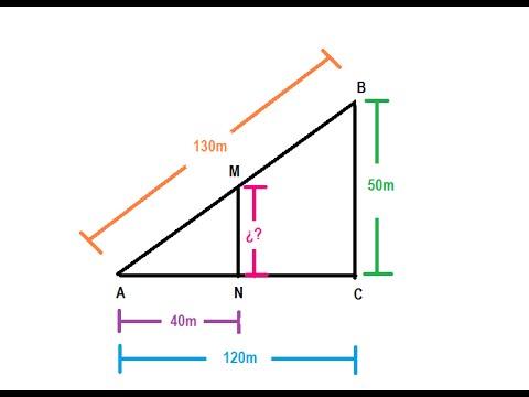 Resultado de imagen de Teorema de Tales