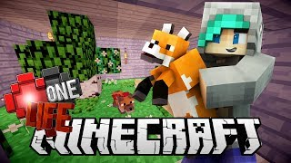 CUTEST FOX SANCTUARY! - One Life SMP Season 3 Minecraft SMP - Ep.15