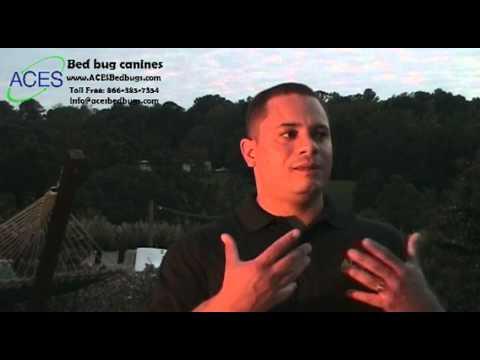Ray Figueroa on ACES bedbug dogs.mp4