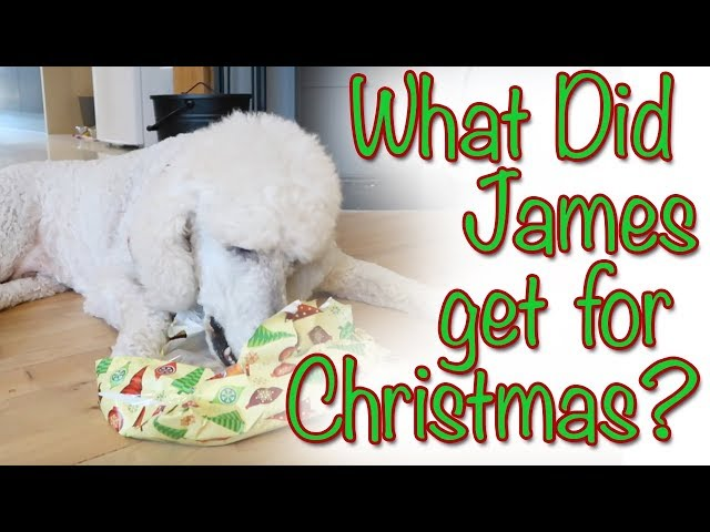 What Did James get for Christmas?