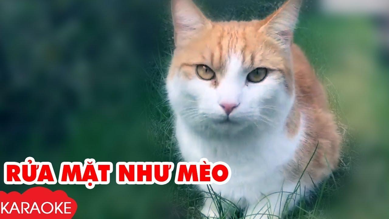 Rửa Mặt Như Mèo - Karaoke | Nhạc Karaoke Thiếu Nhi Beat Chuẩn Dành Cho Bé