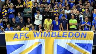 Nine Years. AFC Wimbledon Song