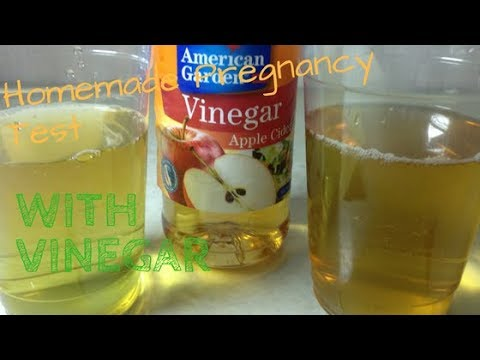 Homemade Pregnancy Test With Vinegar Diy Pregnancy Test Youtube
