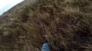 видео Подготовка собак работать по следу человека