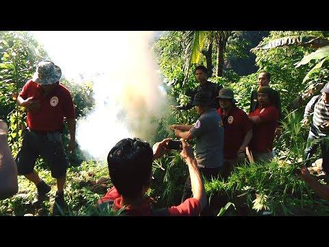 BITAG: Marijuana Eradication