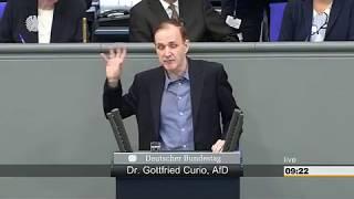 AKTUELL : REDE DR. GOTTFRIED CURIO ( AFD ) AM 17.MAI IM DEUTSCHEN BUNDESTAG IN BERLIN.