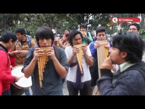 Protesta de la Red de Orquestas de Jujuy por la continuidad laboral de docentes